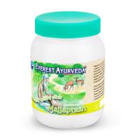 Everest-Ayurveda MAJJAPRASH Mozek & nervy 200 g bylinného džemu