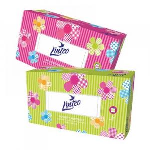 LINTEO Papierové vreckovky BOX 2-vrstvové 200 kusov